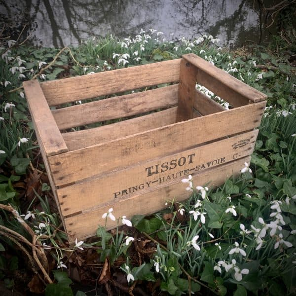 Vintage Apple Crates to Hire